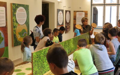 Az Erdők Háza májusi és júniusi látogatói